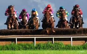 Steeple chase racing