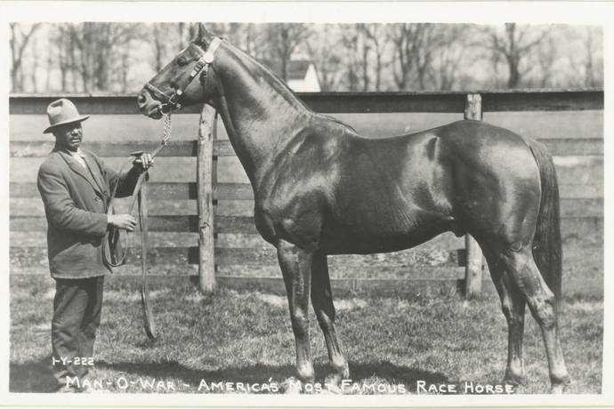 Legendary Race Horses – the Greats