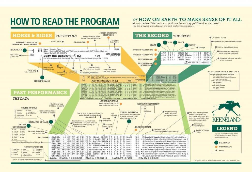 how to read a horse racing program infographic