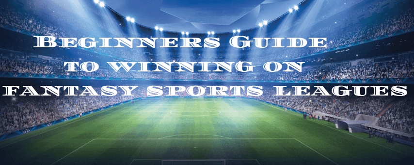 Beginners Guide to winning on fantasy sports leagues