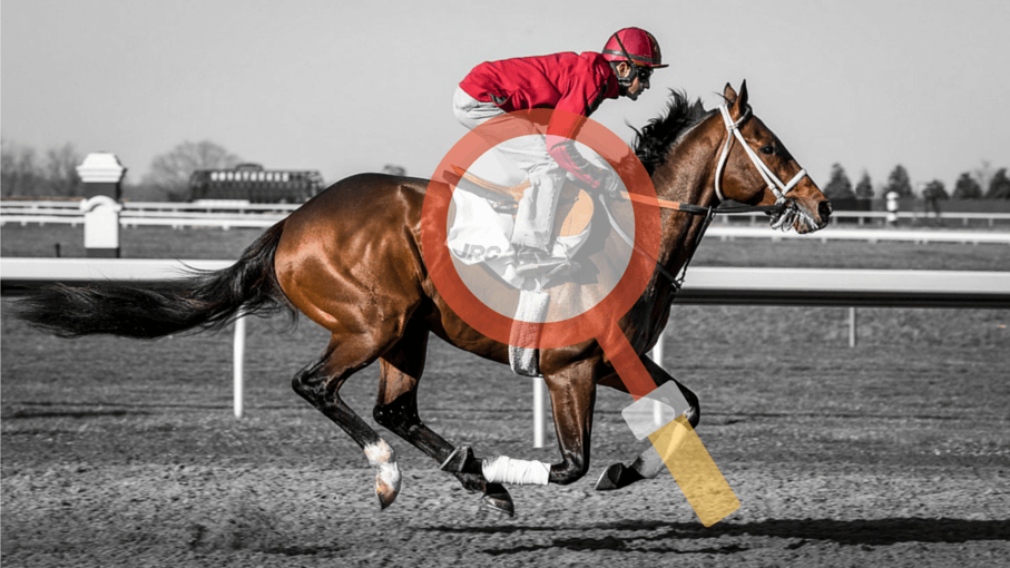 Horse race handicapping: a powerful criteria