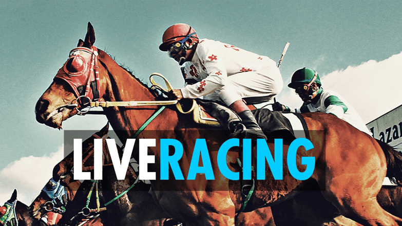 Live horse racing in the USA