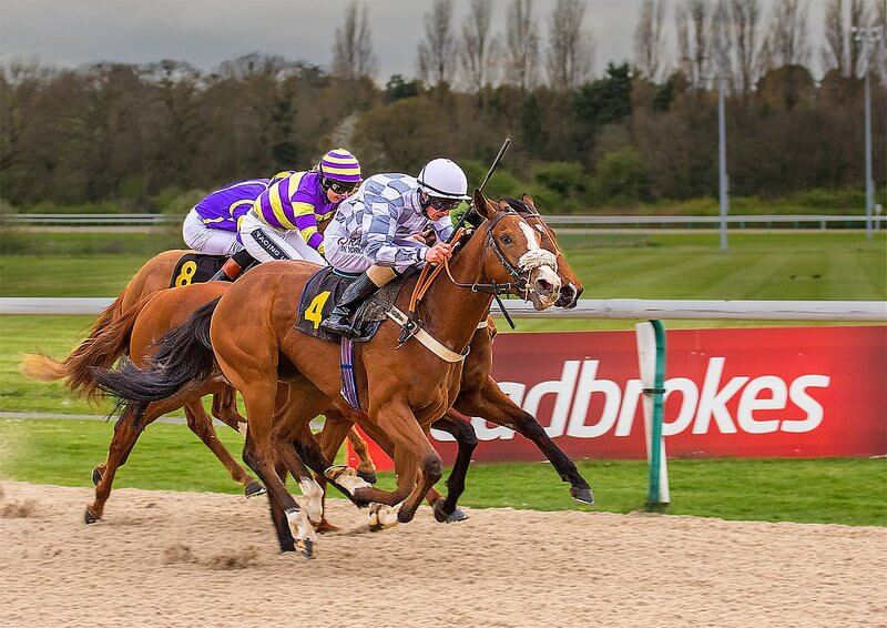 Best Horse Betting Apps in 2020