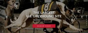 BetAmerica Betting Markets