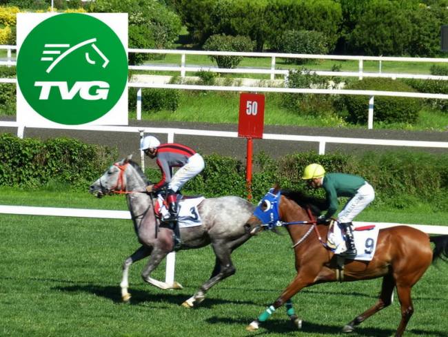 How to get the TVG Bonus: Our step-by-step Guide