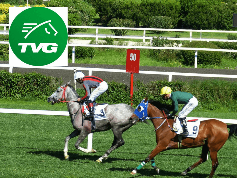 TVG Bonus 2020: How to claim the bonus