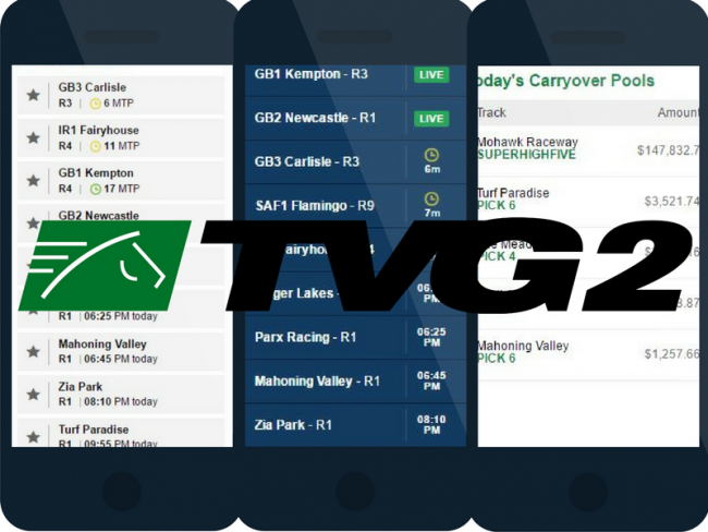 The TVG app: Our Rating and Step-by-Step Guide