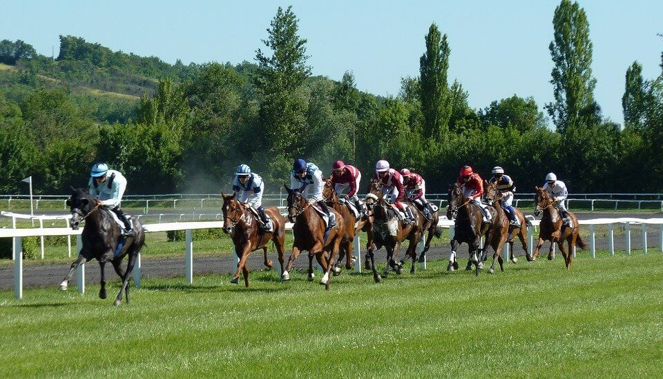 Best Horse Racing Betting Sites 2020