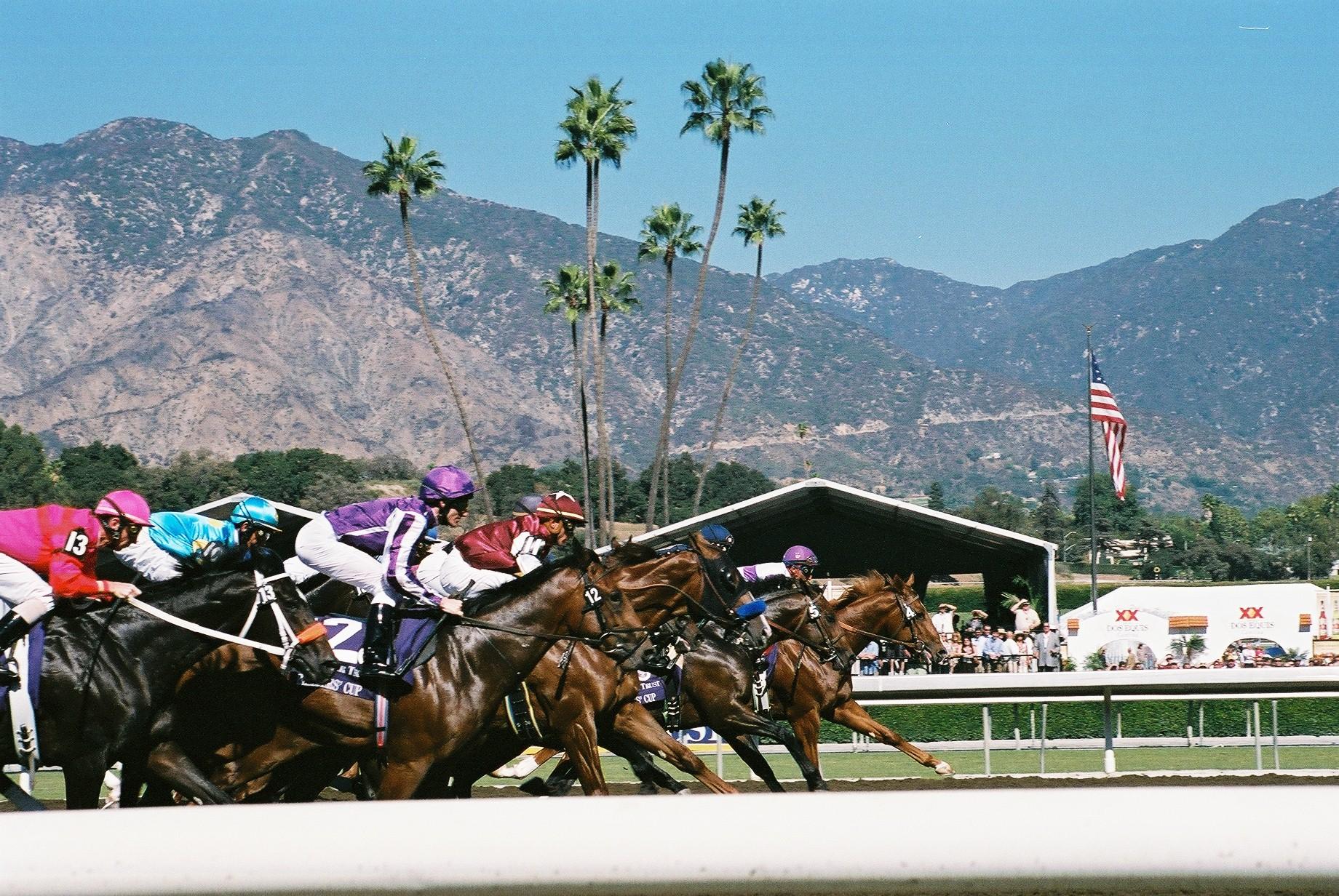 horse racing pix wikipedia