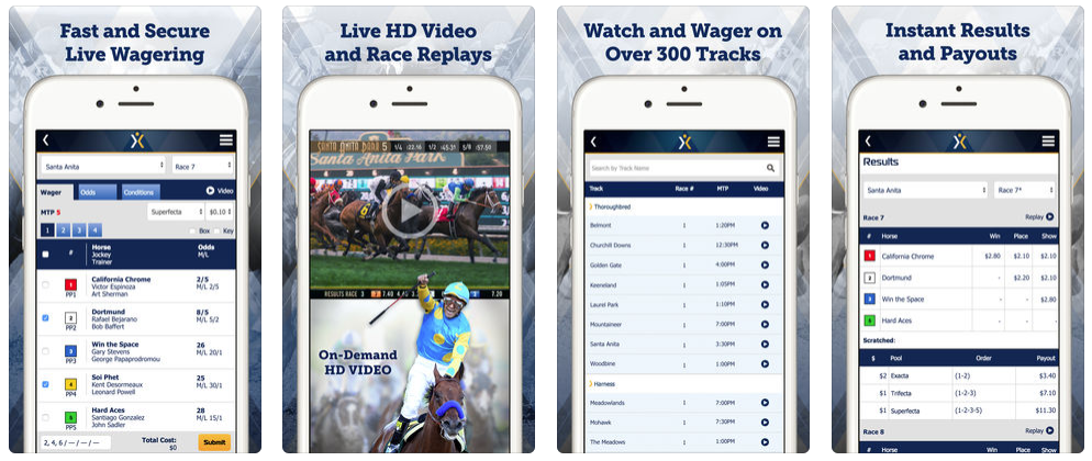 online horse betting app