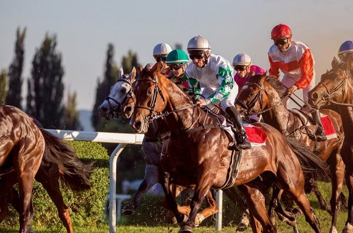 Top 5 Horse Racing Festivals In The World
