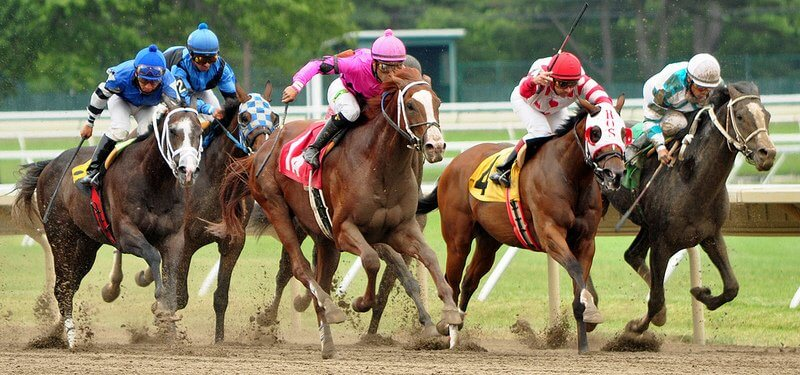 NJ Online Horse Betting