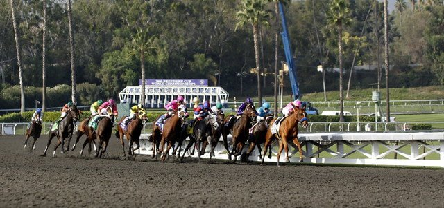 Watch the Breeders Cup Live