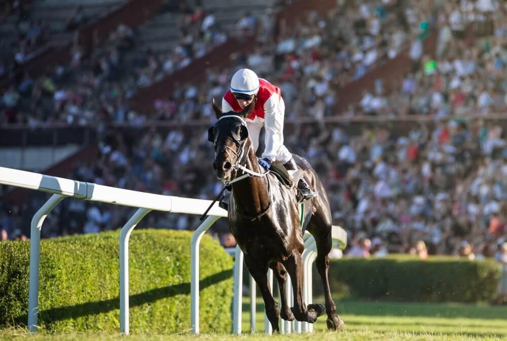 Nevada Online Horse Racing