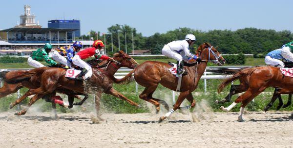 Online Horse Racing