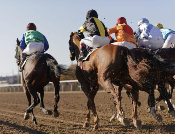 west virginia online horse betting